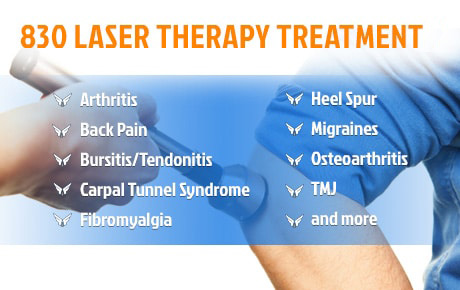 830 Laser Therapy Treatment